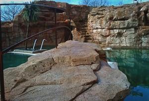 Faux rocher au ch teau de lanniron par aqua roc decor d for Decor rocher piscine