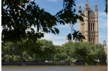 Victoria Tower Gardens et Parlement depuis la rive sud de la Tamise - Crédit photo : © Malcolm Reading Consultants/Emily Whitfield-W icks -